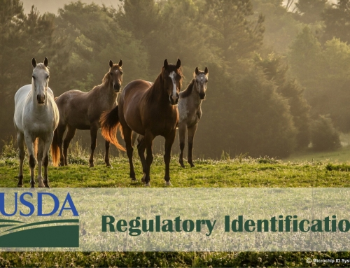 USDA Final Rule Accepts Microchips as Official Identification