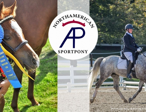 Join the Fun! The NorthAmerican Sportpony Registry
