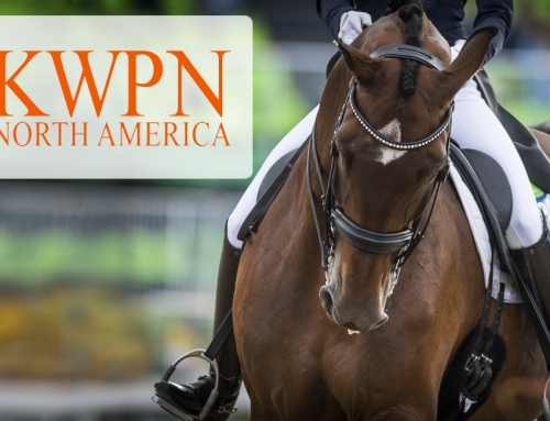 Go Dutch!  KWPN-NA Provides Microchips with All New Registrations