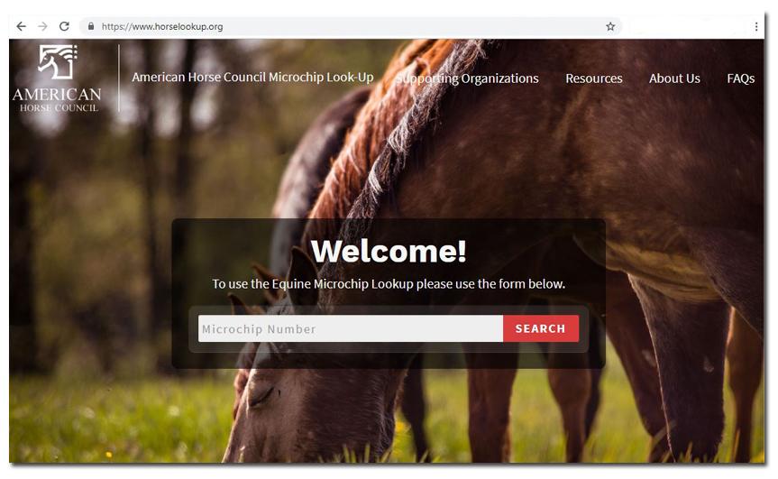HorseLookup.org